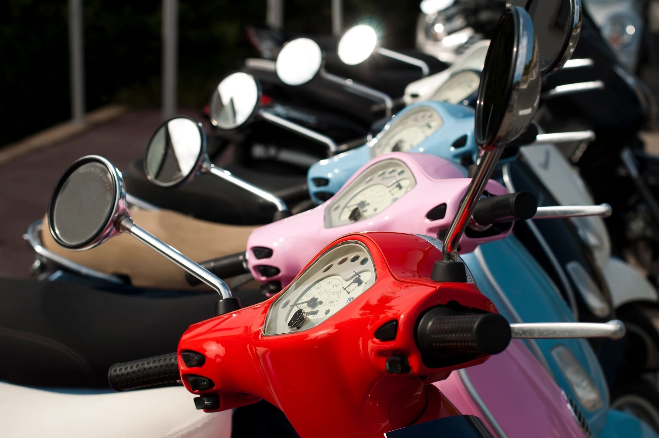 small business moped rental